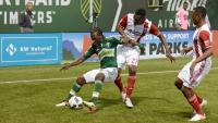 Portland Timbers MLS